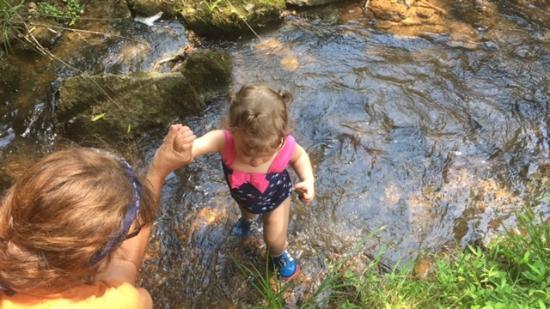 Cavender Creek Cabins Resort: Creek by Driveway