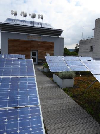 BEST WESTERN PREMIER Hotel Victoria: solar panels & wind powered generators on roof-top garden