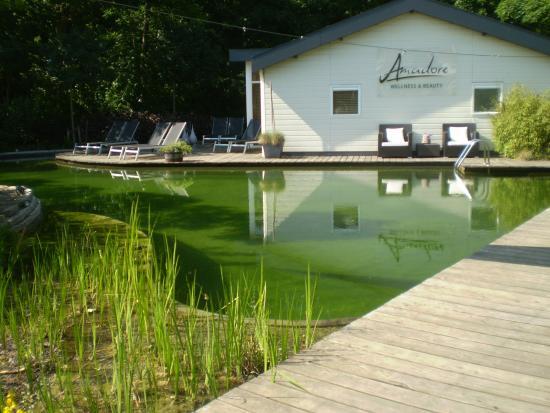piscine filtration v g tale photo de amadore hotel restaurant de kamperduinen. Black Bedroom Furniture Sets. Home Design Ideas