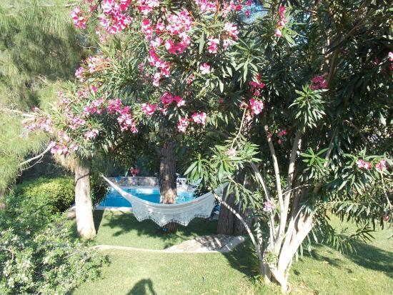 Akkaya Villa: Garten Mit Blick Zum Pool
