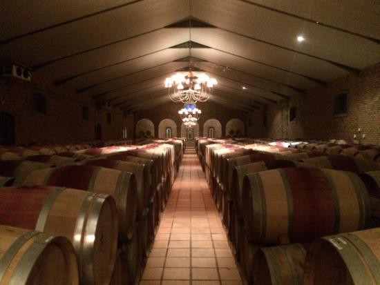 WineFairy