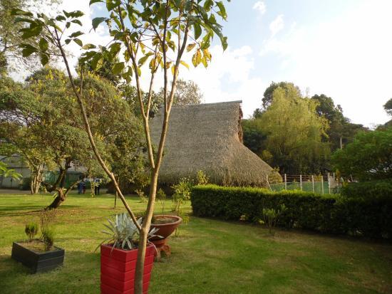 Explora Bogota Day Tours and Activities - Day Tours: Jardín Botánico Bogota