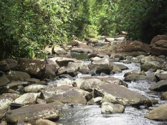 Bentota, Sri Lanka: Polgampola Waterfalls