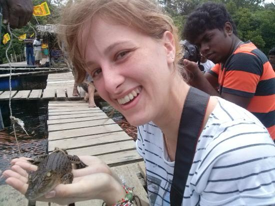 Bentota, Sri Lanka: baby crocodile