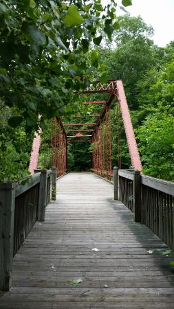 Emmett, MI: Bridge along the trail.