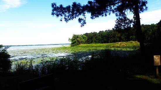 Foto de Three Rivers State Park