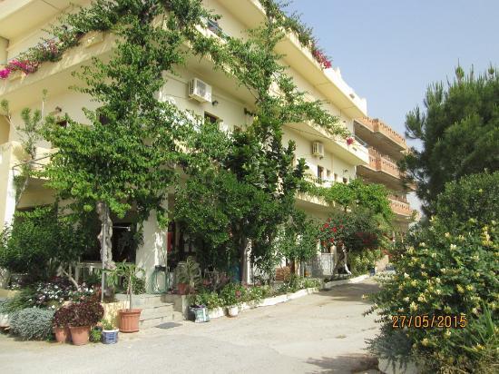 Hotel Knossos: Vue de l'hôtel