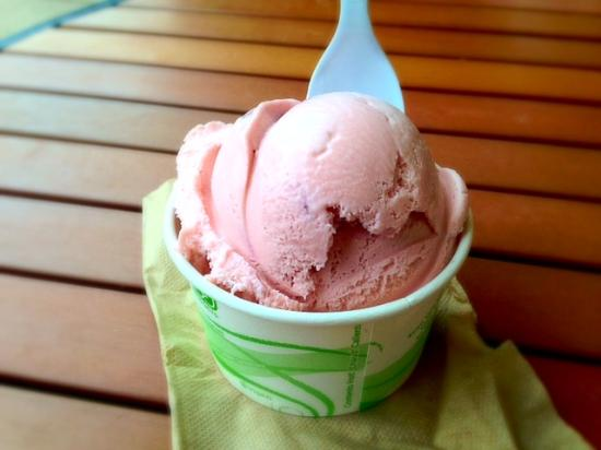 Springdale Candy Company: Wild huckleberry ice cream.