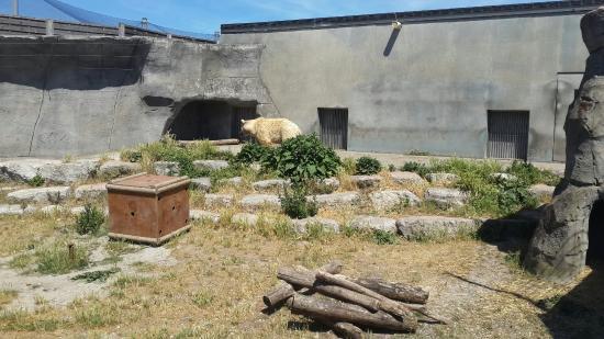 Vue bild von parc zoologique de fort mardyck dunkirk for Parc zoologique 78