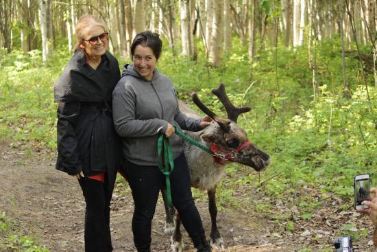 Running Reindeer Ranch: Lots of photo opportunities!