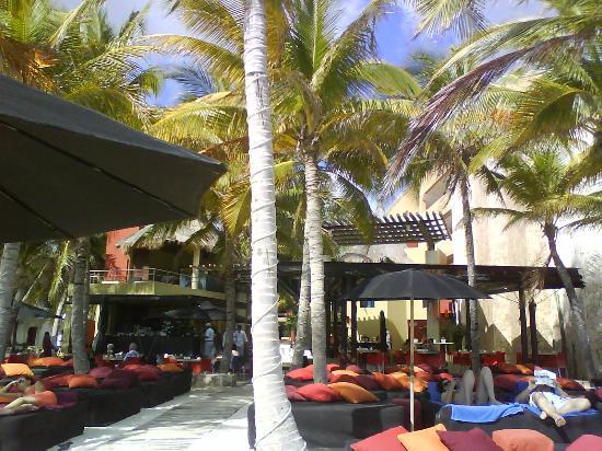 Mosquito Beach Restaurant and Beach Club