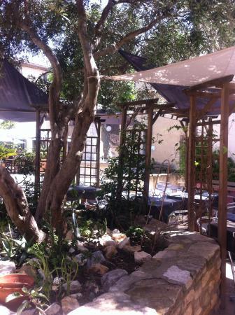 Les jardins de Bages