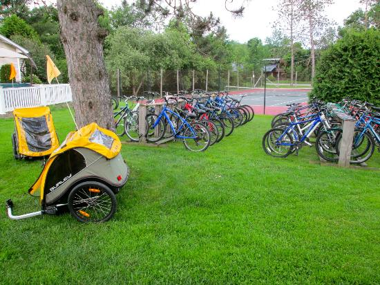 Stowe Motel & Snowdrift : Some of the many bikes available for guests at the motel.