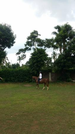Alfonso Hotel: Horse riding