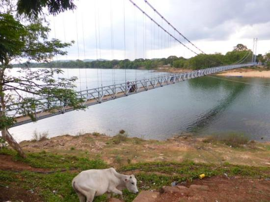 Hanging footbridge at Dhabaleswar Island 3