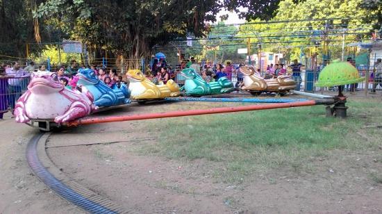 Children's Park: Frog Ride