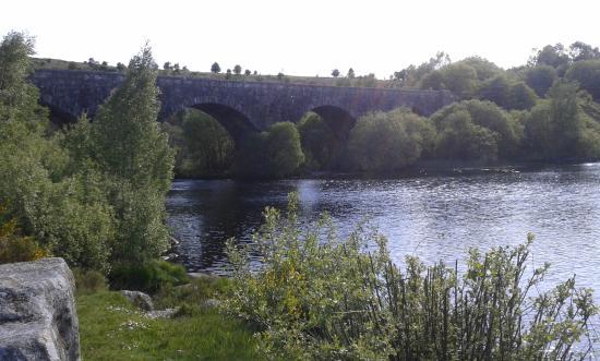 The Raiders Road Forest Drive: Brücke an der Raiders Road