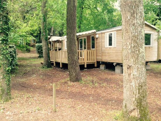 Camping Le Bois dAmour (FranceLaBauleEscoublac  ~ Camping Bois D Amour La Baule
