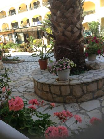 Roula Apartments: Elenis flowers