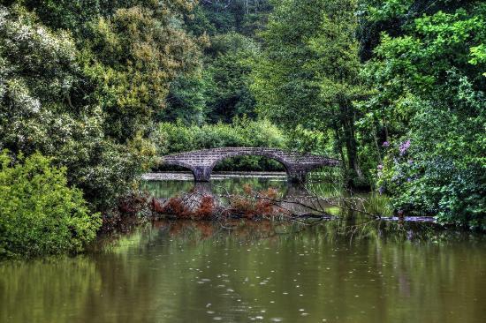 Staunton Park: Dream away your troubles.