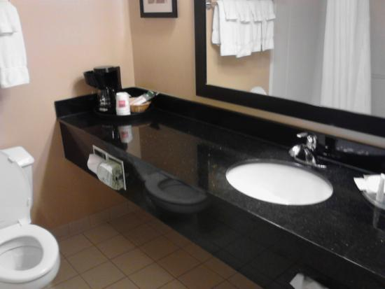 Comfort Suites Saginaw: Room 215