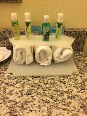 Holiday Inn Express Hotel & Suites Saint Augustine North : Bath and Body Works Products
