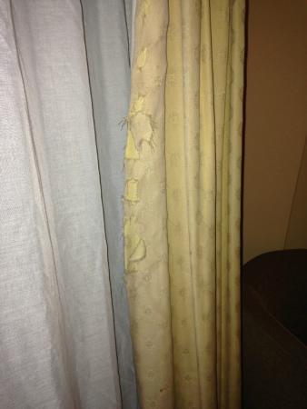 Grafton Capital Hotel: Torn/shredded curtains