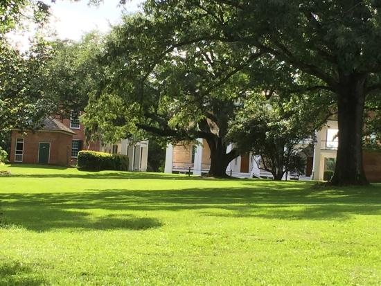 Natchez, MS: The grounds of Melrose...