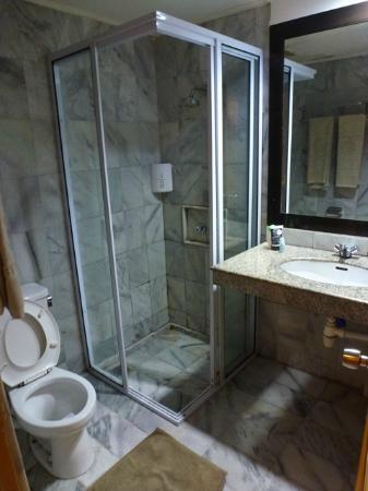 Comfort Hotel & Resort Tanjung Pinang: kamar mandi