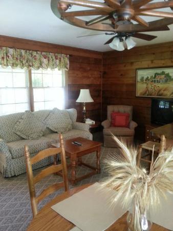 Carolina Motel : The area inside our smaller cabin.