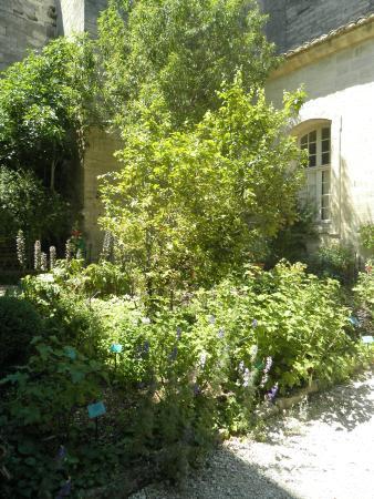 Medieval garden uzes picture of le jardin medieval uzes for Jardin medieval