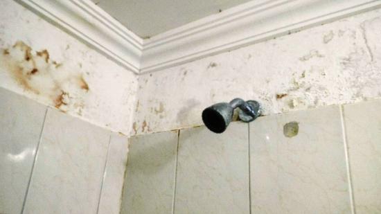 Puertas Para Baño Heredia:Hotel Puertas de Cartagena: BAÑO de HABITACIÓN 5 humedad y pared