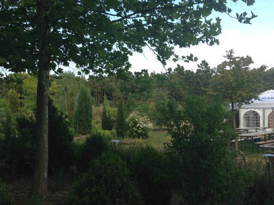 Artrium am Park: Jardin