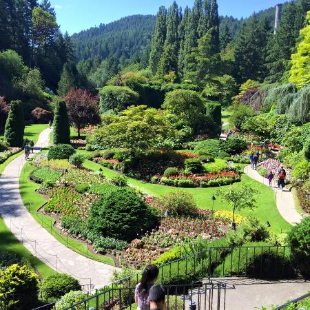 So Much Beauty Picture Of The Butchart Gardens Central