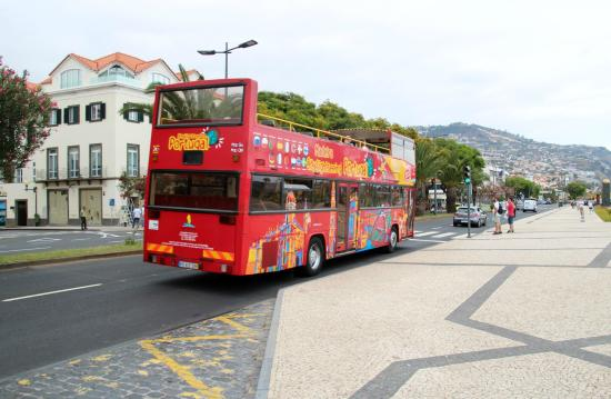 Funchal Sightseeing Bus by Madeira Tours