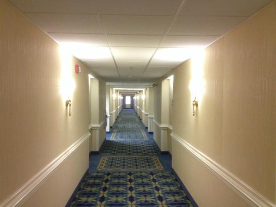 Holiday Inn Express State College, Williamsburg Square: 走廊