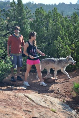 Colorado Wolf Adventures