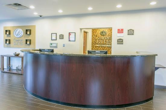 Comfort Inn Suites Amelia Island Florida