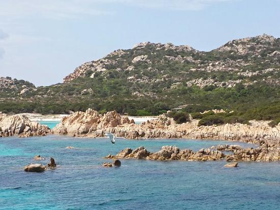 Elena tour isola di spargi e piscine naturali foto di elena tour navigazioni la maddalena - Isola di saona piscine naturali ...