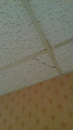 More Damaged Possibly Asbestos Ceiling Tiles Picture