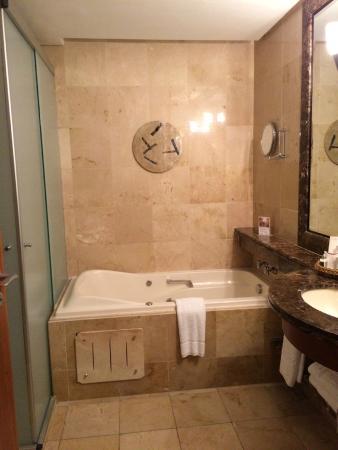 George V Alto de Pinheiros Hotel: Banheira