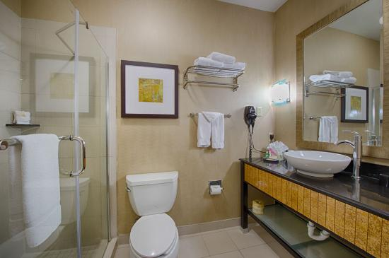 Holiday Inn Hotel-Houston Westchase: Guest Room Bathroom
