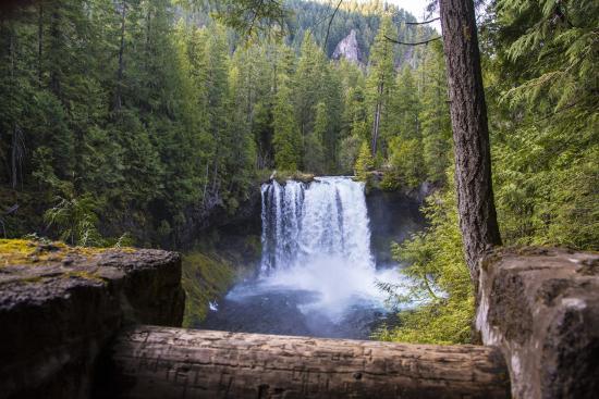 Sisters, OR: McKenzie River Kooskah Falls Veiwpoint