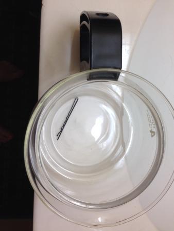 Sleep Inn Springfield : Hairpin found in empty coffee pot!