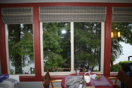 Black Bear Inn: windows looking out from our room