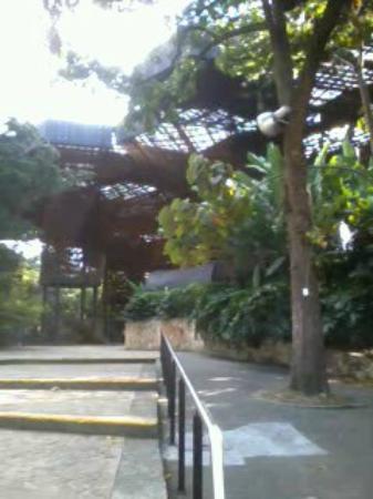 Entrada al orquideorama picture of jardin botanico de for Costo entrada jardin botanico