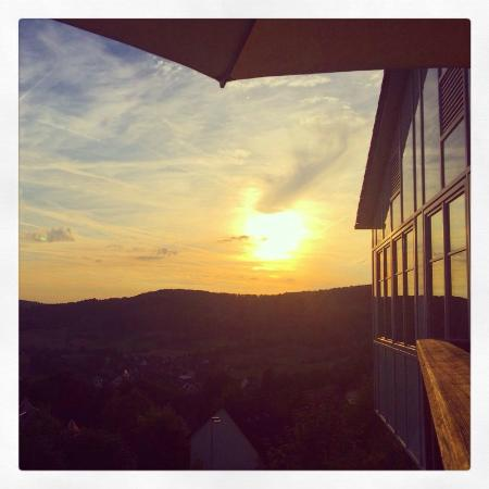 Igelwirt: Abendsonne / Breaking dawn