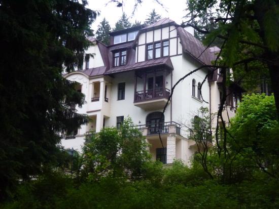 Saint Moritz Spa & Wellness Hotel: Отель в лесу