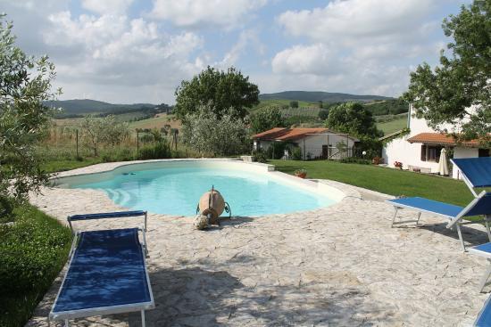 Agriturismo La Locandiera: Una vista della piscina