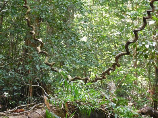 Manupeu Tanah Daru National Parks